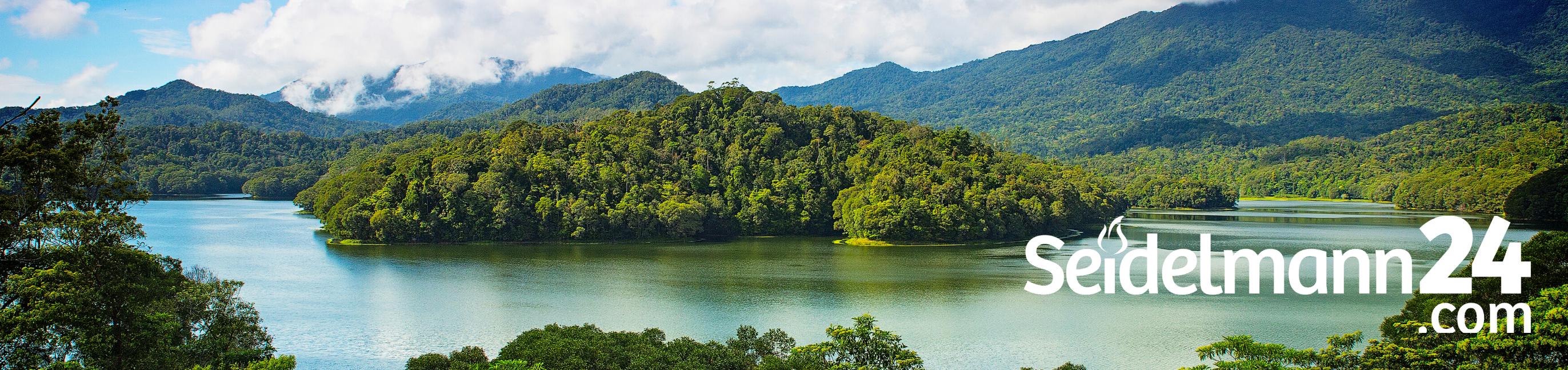 Frage der Woche: Schadet unsere Holzkohle den Tropenwäldern?